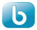 Logo Bluestone Technologie